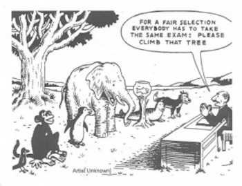 differentiationcartoon